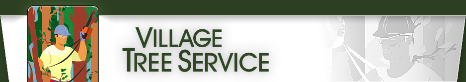 Village Tree Logo and Header